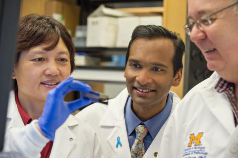 Michigan Center for Translational Pathology scientists in the lab